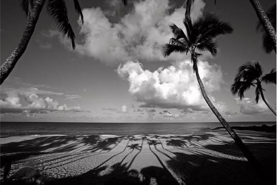 como hacer fotos en blanco y negro