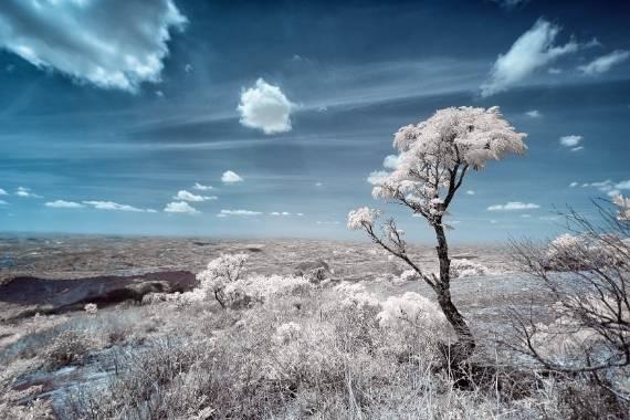 fotografia infrarroja 1