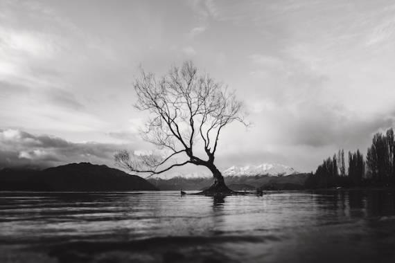 fotos blanc i negre