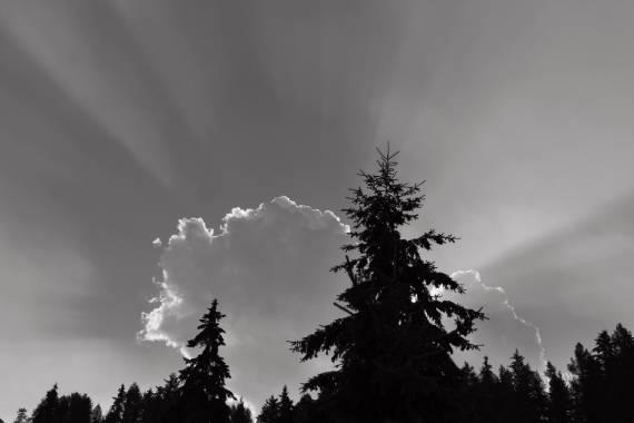 mejores fotos en blanco y negro