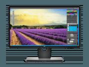 monitor eizo para fotografia